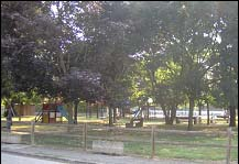 parco 7