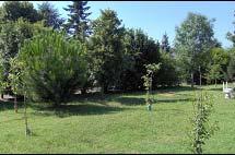 giardini 6
